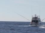 phgfc-boats-2.jpg